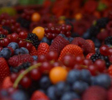 Πανεπιστήμιο Χάρβαρντ: Ποιες τροφές ευνοούν την φλεγμονή και ποιες την καταπολεμούν