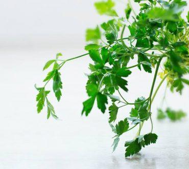 Συμβουλές για να δημιουργήσουμε τον δικό μας κήπο μυρωδικών στο σπίτι