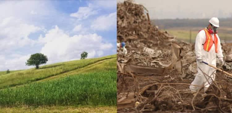 Νέα Υόρκη: Η μεγαλύτερη χωματερή του κόσμου μετατράπηκε σε μια πράσινη όαση που παρέχει ενέργεια σε σπίτια της περιοχής