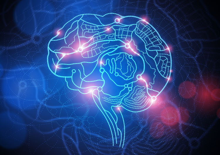 Νευροπλαστικότητα: Τι είναι και πως μπορούμε να παρέμβουμε στο αυτόνομο νευρικό μας σύστημα (Βίντεο)