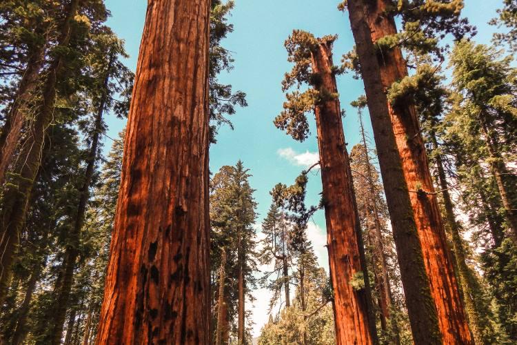 5 νέες ανακαλύψεις για την κλιματική αλλαγή που διαμορφώνουν τους τρόπους αντιμετώπισης στο μέλλον