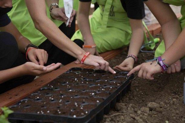 Δημοτικό Σχολείο Ριζίων: Ένα πρότυπο θερμοκήπιο «καλλιεργεί» τις δεξιότητες και την ψυχή των μαθητών