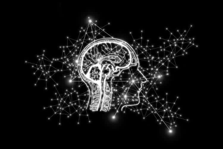 Εγκέφαλος: Νέες έρευνες ρίχνουν φως στο πώς αριστερό και δεξί ημισφαίριο συνεργάζονται και στηρίζονται