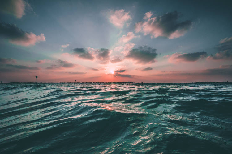 Η ηχορύπανση «καταπνίγει» τους φυσικούς ήχους του ωκεανού, σύμφωνα με έρευνα