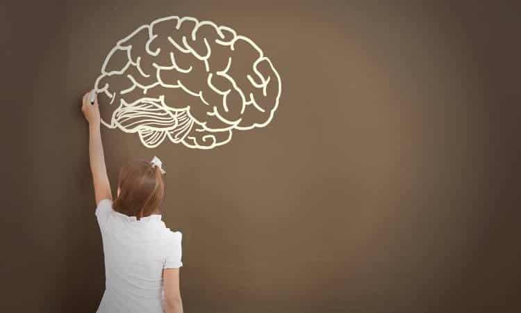 """Νευροεπιστήμονες ανακάλυψαν το """"χαρούμενο μέρος"""" του ανθρώπινου εγκεφάλου"""