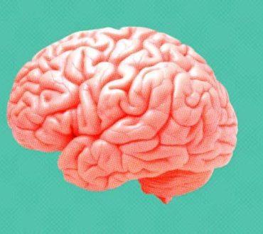 7 Θαυμαστές αλήθειες και λειτουργίες του εγκεφάλου