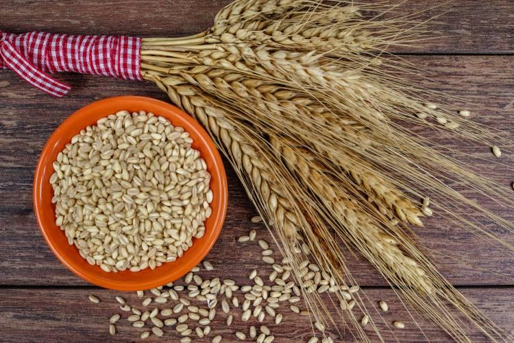 Γιατί οι τροφές ολικής αλέσεως θεωρούνται τόσο υγιεινές;