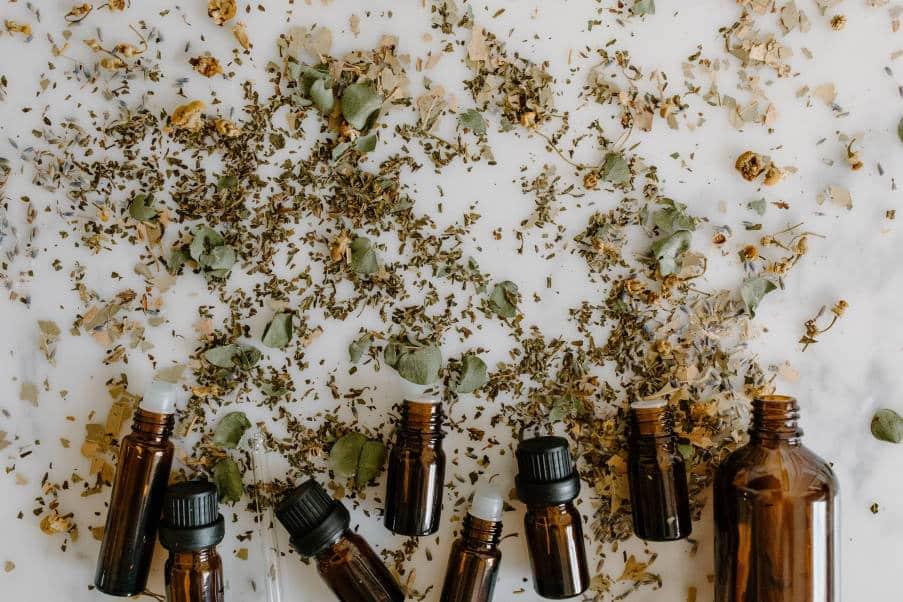 8 φυσικά συστατικά που απωθούν τα κουνούπια