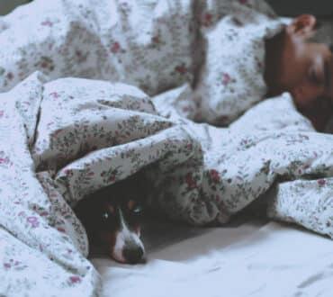 Πώς τα εκπαιδευμένα κατοικίδια μπορούν να βοηθήσουν άτομα με διαταραχές ύπνου