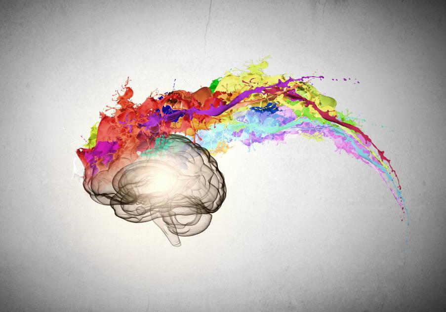 Πώς ο εγκέφαλός μας αποφασίζει τι είναι όμορφο (βίντεο)
