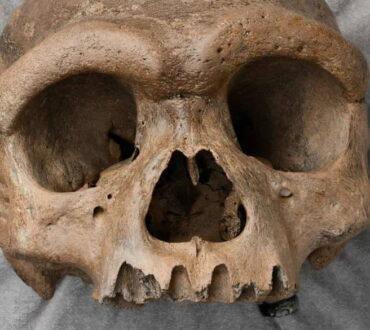Κρανίο του «ανθρώπου-δράκου» αναγκάζει τους επιστήμονες να επανεξετάσουν την εξέλιξη