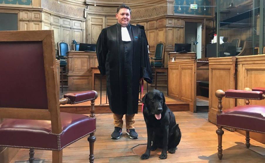 «Lol»: Το λαμπραντόρ που ηρεμεί τους αγχωμένους μάρτυρες στα Γαλλικά δικαστήρια