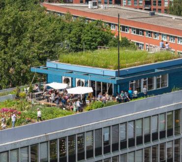 Το πρώτο αυτόνομο αγρόκτημα σε οροφή κτηρίου στην Ευρώπη βρίσκεται στο Ρότερνταμ (Φωτογραφίες)