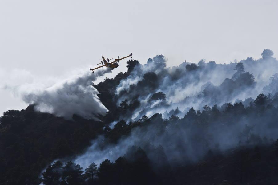 Πυρκαγιές στην Ελλάδα: Πώς μπορούμε να βοηθήσουμε (Όλες οι πληροφορίες και οι φορείς)