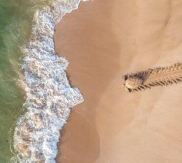 Ο δημοφιλής διεθνής διαγωνισμός αεροφωτογραφίας έλαβε πέρυσι σχεδόν 14.000 εικόνες για την έκδοσή του 2020 από ερασιτέχνες και επαγγελματίες φωτογράφους από 104 χώρες.