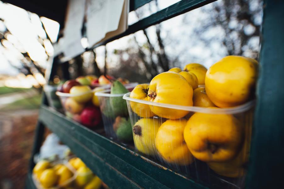 Ποια είναι τα πιο θρεπτικά φρούτα και λαχανικά του Σεπτεμβρίου