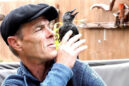 Η ξεχωριστή σχέση ανάμεσα σε έναν άνδρα και ένα άγριο πουλί μετά από τραυματισμό του (Βίντεο)