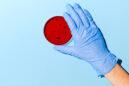 Αντιμετωπίζοντας τα βακτήρια με ιούς: Είναι η απάντηση στην αντίσταση στα αντιβιοτικά;