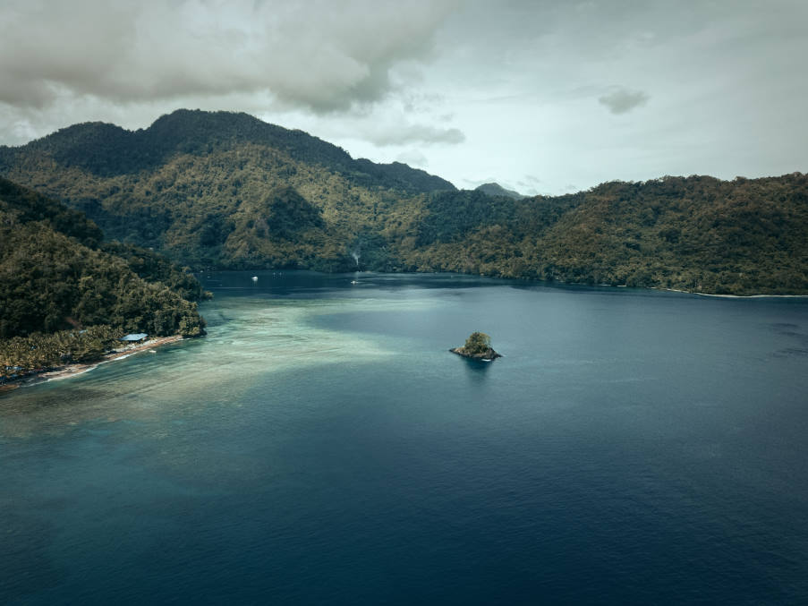 Γνωστές πολυεθνικές συνδέονται με μια σοκαριστική κατάχρηση φοινικέλαιου στην Παπούα Νέα Γουινέα