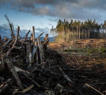 Κλιματική αλλαγή: Πώς ξέρουμε ότι συμβαίνει και ότι προκαλείται από τον άνθρωπο