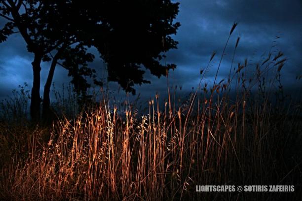 LightScapes-1