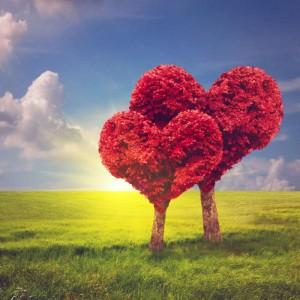 αγάπη ζευγάρι καρδιές